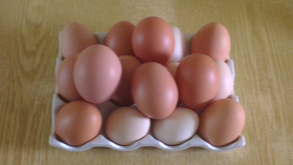 Collection of our fresh eggs